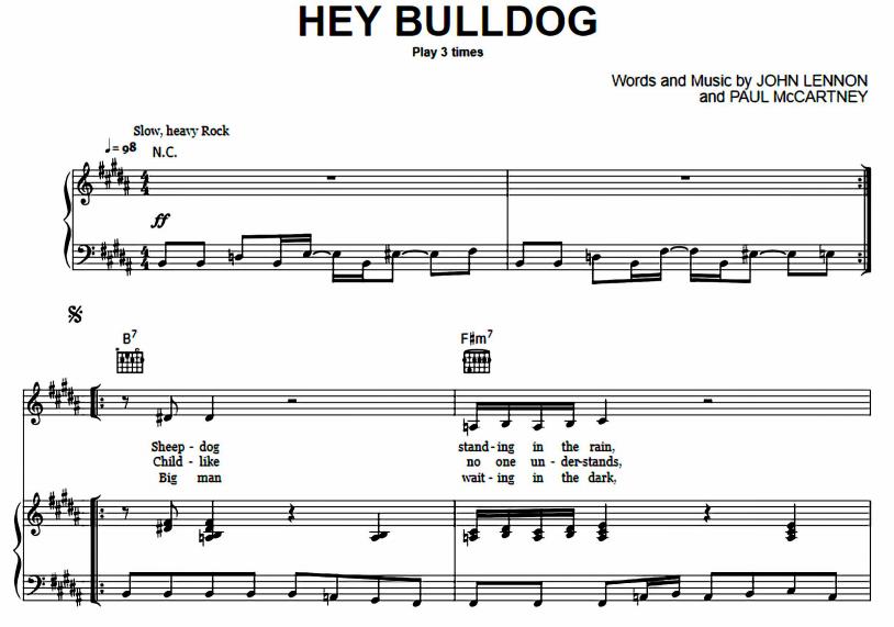 Hey Bulldog